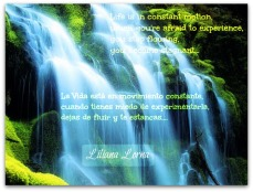 Quote Liliana Lorna 1